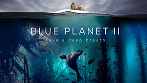 Blue Planet II - Campaign