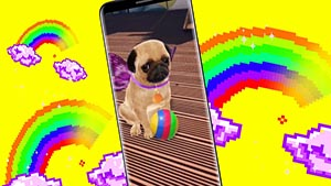 Three - Snapchat Puggerfly